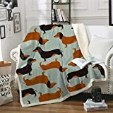 Dachshund Fleece Blanket Soft Fuzzy Sausage Dog Sherpa Blanket for Kids Teens Boys Plush Puppy Cartoon Throw Blanket for Couch Bed 50'x60'