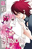 Shinobi Life T13 (Fin)