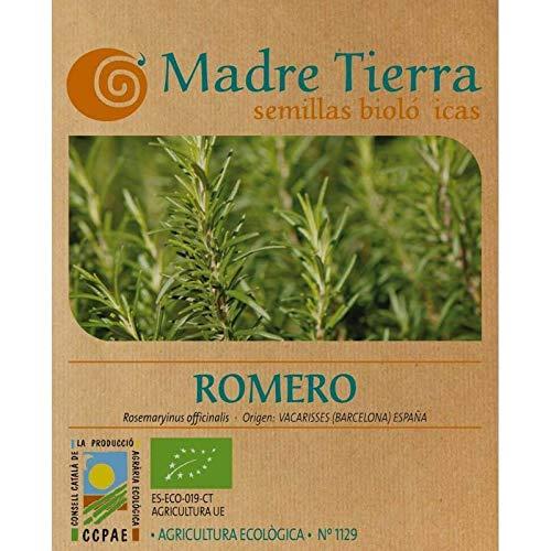 Madre Tierra - Semillas Ecologicas de Romero -(Rosemaryinus Officinalis) Origen Vacarisses - Barcelona - Semillas Especiales - 1.5 gramos