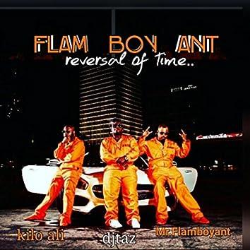 Flam Boy Ant (feat. Kilo Ali & DJ Taz)