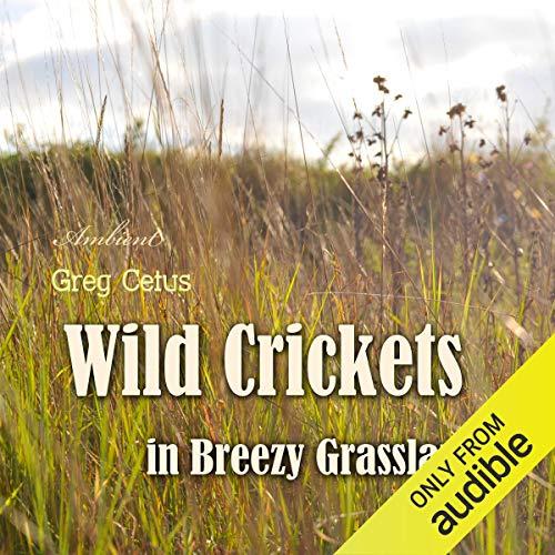 Wild Crickets in Breezy Grasslands cover art