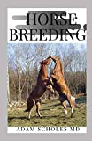 HORSE BREEDING: The Perfect Guide On How To Breed Your Horse