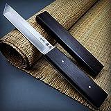 Asuka 10 1/4' Modern Japanese Samurai Tanto 3CR13 Steel Full Tang