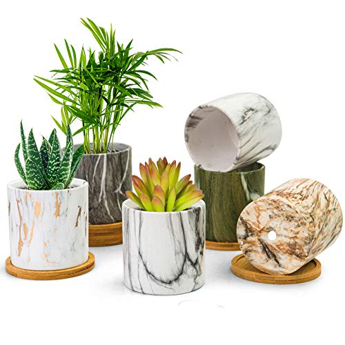 BUYMAX Succulent Plant Pots, 3.1 inch Marbling Ceramic Glazed Planters with Drainage Hole, Small Flower Pot Indoor with Bamboo Tray for Cactus, House Office Decor Gift - 6 Pack (Marble-B)