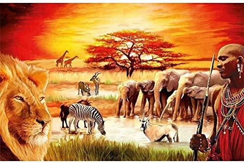 5D DIY diamant schilderij Afrika Ronde diamant borduurwerk kristal strass borduurwerk schilderij diamant decoratie huis wanddecoratie
