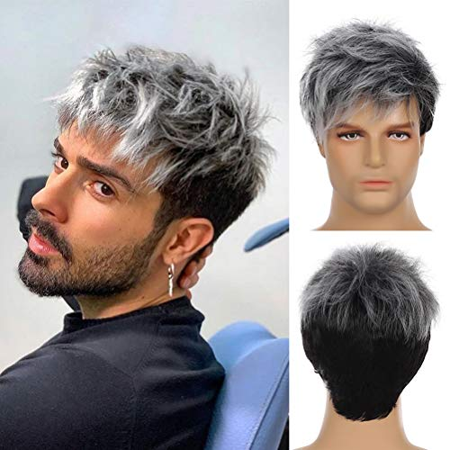 Sallcks Men Grey Wig Short Layered Gray Mixed Black Natural Synthetic Halloween Cosplay Costume Wigs for Male Boys