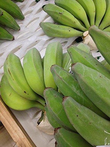 【期間限定】 沖縄県産 島バナナ 約1000g相当分 数少ない国産バナナ 甘みと酸味のバランスが絶妙で濃厚な風味