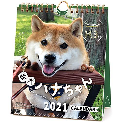 2021年 柴犬ハナちゃん(週めくり)カレンダー 1000115881 vol.023
