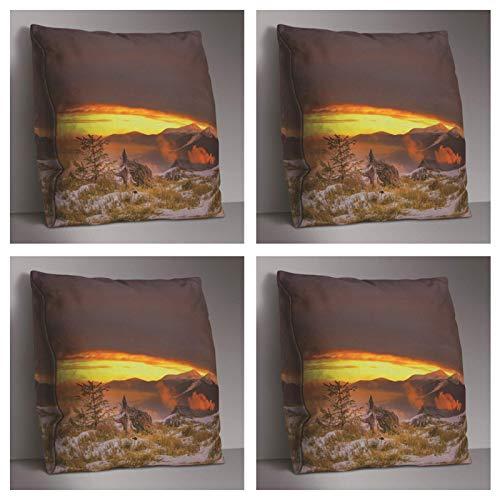Impresión de doble cara Lh5525 Decoración de poliéster de la cubierta del cojín, utilizado para el asiento del sofá suave almohada cubierta 45X45Cm Decoración del hogar 4 piezas Set