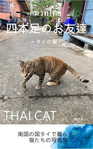 四本足のお友達~タイの猫~ THAI CAT