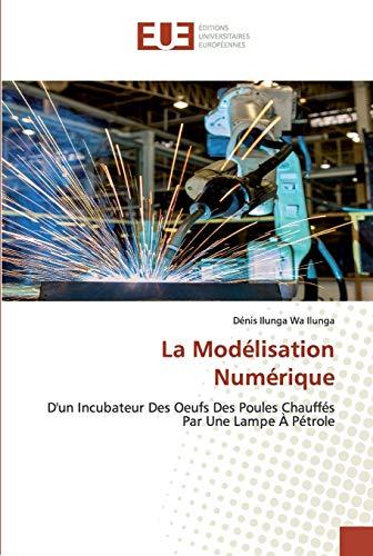 La Modélisation Numérique: D'un Incubateur Des Oeufs Des Poules Chauffés Par Une Lampe À Pétrole