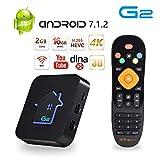 GT MEDIA G2 4K Android TV Box 7.1.2, Amlogic S905W Quad-Core 2GB RAM+16GB ROM, 3D / H.265 HEVC / MPEG-4 / Wi-Fi 2.4G Smart TV Box Netflix Youtube GTplayer Soporte
