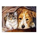 Cat and Dog - Kit de pintura de diamante 5D para adultos (30 x 40 cm)