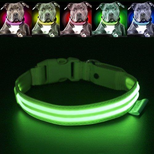 Pawow LED-Hundehalsband, wiederaufladbar über USB, für Sichtbarkeit und Sicherheit, Grün, Größe S