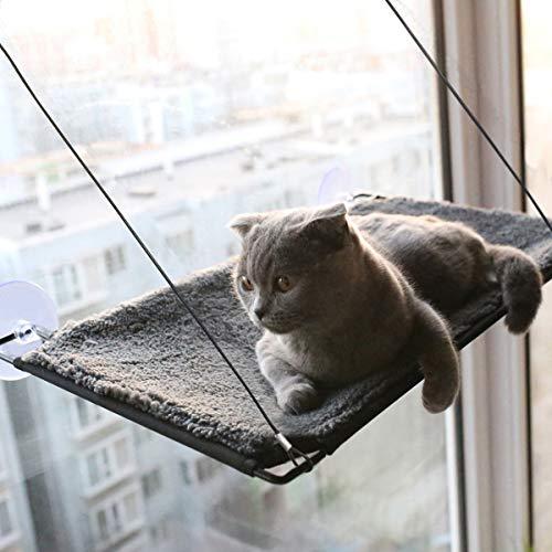 BobbyPet Cat Window Perch