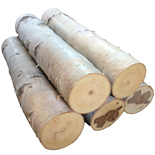 Lowest Price! Large Birch Fireplace Log Set of Five