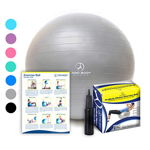 ProBody Pilates Exercise Ball - Professional Grade Anti-Burst Fitness, Balance Ball for Yoga, Birthing, Stability Gym Workout Training and Physical Therapy - Work Out Guide Included (Silver, 45 cm)