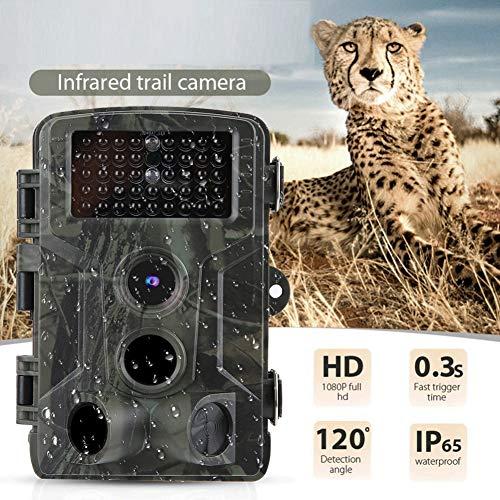 Jacht- en achteruitkijkcamera's, 16MP 1080P HD 120 ° groothoekcamera voor het observeren van wilde dieren buitenshuis, waterdichte IP65-camera voor het verkennen van 0,5 seconden