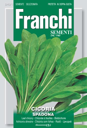 Seeds of Italy Franchi Graines de chicorée Spadona