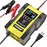 IEIK 12V/6A Battery Charger...