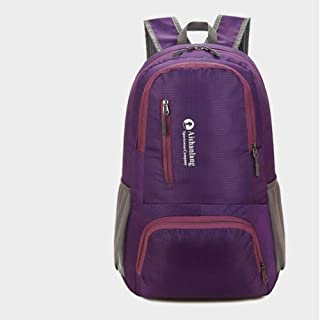 SP-Xhz Outdoor Mountaineering Bag Portable Backpack Student Sports Multi-Function Walking Equipment Men's Backpack (Color : Purple, Size : 48 * 32 * 16cm)