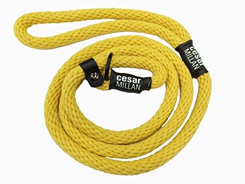 Hundeflüsterer Cesar Millan Leine Hundehalsband Illusion Collar Gelb gewebte weiche Baumwolle