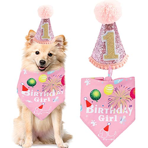 BIPY Dog 1st Birthday Hat Bandan...