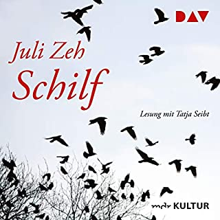 Schilf audiobook cover art