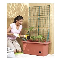 Self-Watering Vegetable Planter Box with Trellis