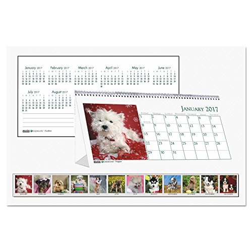 HOD3659 - Recycled Puppy Photos Desk Tent Monthly Calendar Photo #1