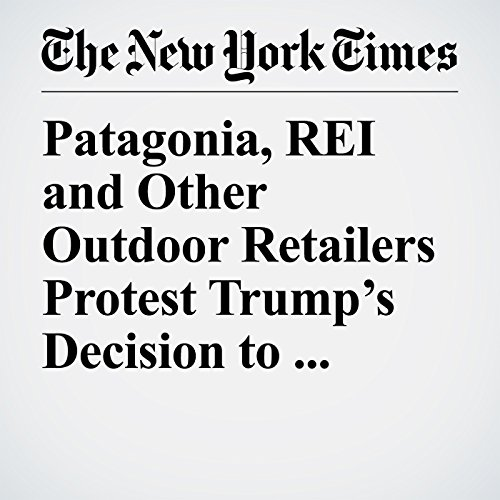 Patagonia, REI and Other Outdoor Retailers Protest Trump's Decision to Shrink Utah Monuments copertina