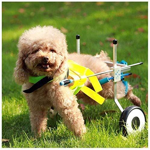 AYHa Perro ?? carros, para mascotas, las piernas traseras, Rehabilitación discapacitados discapacidad motriz, Big cachorros, ajustable, 2 vueltas, 2 Kg - 50 Kg - Él,*-Grande