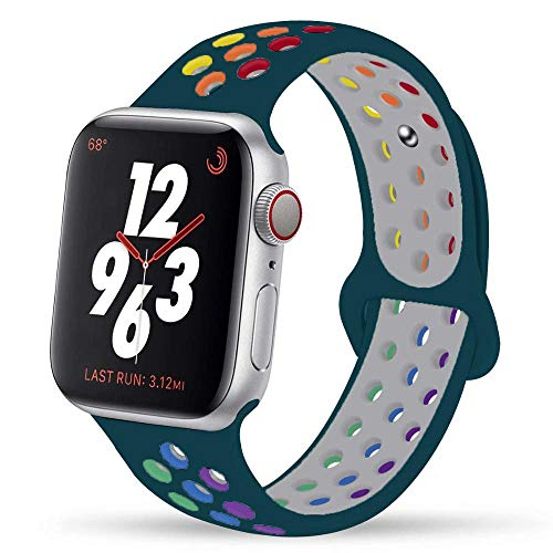 Ternzun Correa de silicona para Apple Watch Series 6, 5, 4, 3, 2, SE, 44 mm, 40 mm, para iwatch Band 42 mm, 38 mm (42, 44 mm, SM, orgullo de pino)