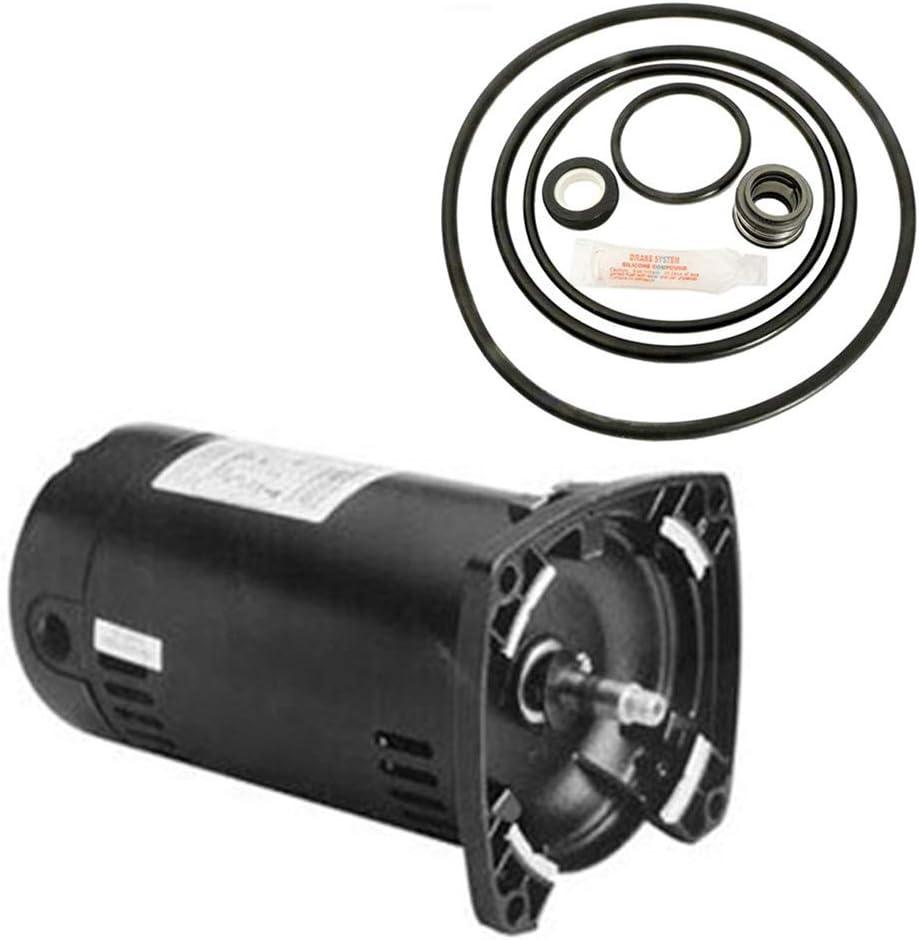 Puri Tech Sta-Rite Dyna-Glas Replacement 低廉 Motor MPRA6D-146L 完売 .75HP