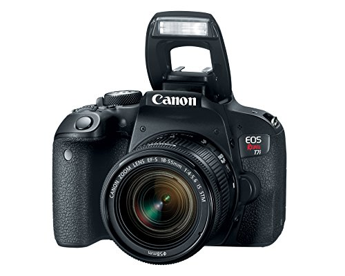 Canon EOS Rebel T7i US 24.2 Digital SLR Camera with 3-Inch LCD, Black (1894C002)