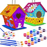 hapray DIY Bird House Kit, - 2Pack - Crafts for Children to Build and Paint Birdhouse (Includes Paints & Brushes) Wooden Arts for Kids Girls Boys Toddlers
