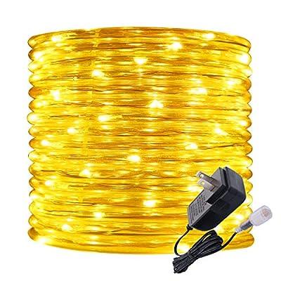 Rope Lights Outdoor, 16ft Amber LED Mini Light ...