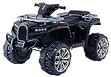 RIRICAR Electric Ride-On Quad ALLROAD 12V, Negro, enormes Ruedas EVA Suaves, 2 x 12V, Motor, Luces LED, Reproductor de MP3 con USB, batería 12V7Ah