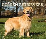 Golden Retriever – For the love of 2020 - 16-Monatskalender mit freier DogDays-App: Original BrownTrout-Kalender - Deluxe [Mehrsprachig] [Kalender] (Deluxe-Kalender)