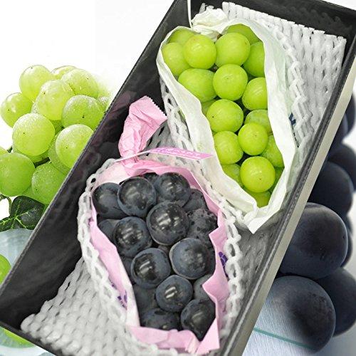 フルーツ ギフト ナガノパープル シャインマスカット 種無しぶどう セット 果物 プレゼント