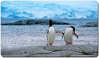 Antarctica King Penguins Animal 03 - Large Gaming Mouse Pad - Tabletop Mat - 23.6