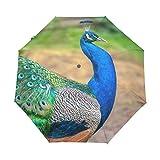 AOTISO Paraguas de Viaje a Prueba de Viento Plegable de Cierre automático de Green Peacock Super Wings