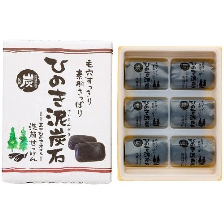 ホール絡み合いベールひのき泥炭石 すっきりタイプ 黒 30g×6個入