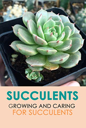 Succulents: Growing and Caring for Succulents : Perfect Gift For Holiday