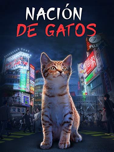 Nación de Gatos