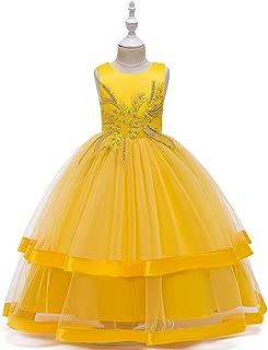 Luxury Children Princess Dress Wedding Dress Long Section of Gauze Tutu Skirt Princess Dress Girls Large Children's Clothing Stage Costumes and Elegant Embroidered Evening Dress ryq