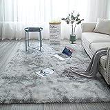 Fercisi Ultra Soft Modern Area Rugs Nursery Rug Home Room Plush Carpet Decor Area Rugs