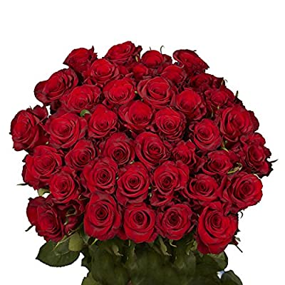 50 Red Roses- Fresh Cut Flowers- Next Day Delivery from Globalrose