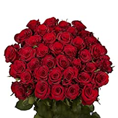 "50 Red Roses | 2 bouquets of 25 stems. Beautiful Fresh Flowers for Birthdays, Weddings, Anniversaries or any special Occassion. The stems are 16""-18"" long. 