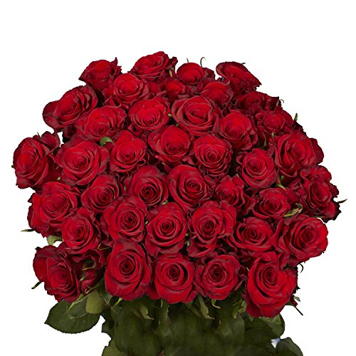 GlobalRose 50 Red Roses - Fresh Flower Delivery- Lovely Bright Blooms